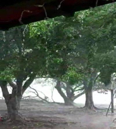 Alerta meteorológica en el sur del país