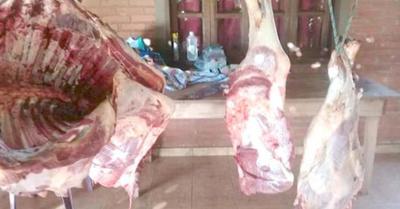Ladrones de  vacas causan estragos voi