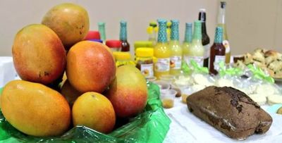 Festival del mango en Areguá podrá ser visitado durante todo enero