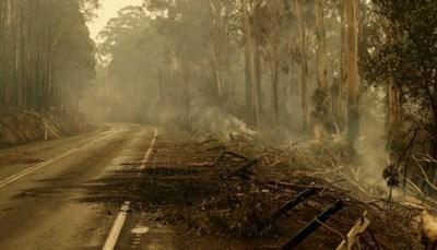 Lluvia da respiro en los incendios en Australia