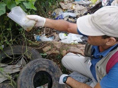Cifras más altas de casos sospechosos de dengue se registra en Asunción