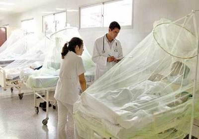 El Dengue cuesta caro al Estado