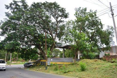 Surtidor abandonado es un vertedero en zona azotada por el dengue