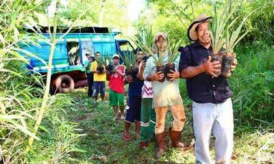 Impulsarán proyectos productivos con familias indígenas
