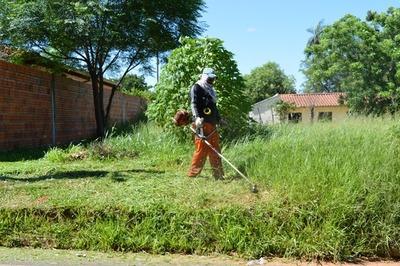 CDE: Municipalidad da un plazo de 24 horas para limpiar terrenos baldíos