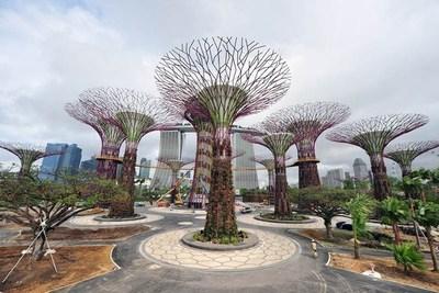 """Singapur: Estos son sus """"Súper árboles"""" artificiales que generan energía solar"""