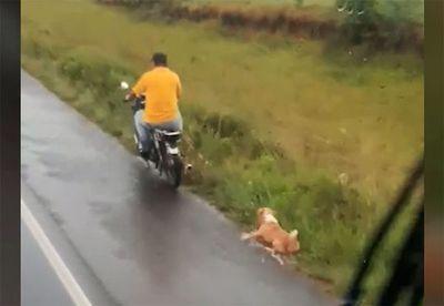 Motociclista arrastra a un perro en Misiones