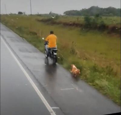 Motociclista arrastró a un perro y fue imputado por la Fiscalía