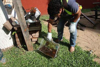 Más de 115.000 criaderos de dengue detectados a nivel país