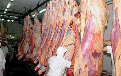 Apertura de nuevos mercados de la carne se logrará trabajando entre todos