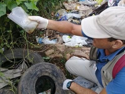 Senepa: El 95% de las casas tiene criaderos del mosquito