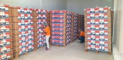 Paraguay realizó primer envío de cerca de 25 Tn de banana a Chile