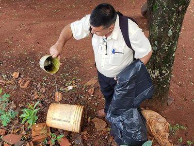 Dengue: ignorar mitos, acudir al hospital e hidratarse