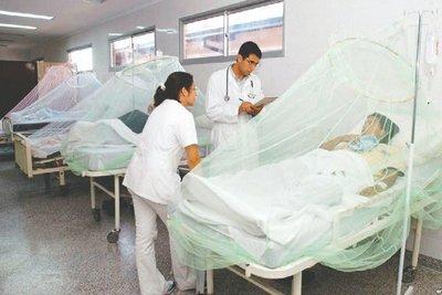 Ya son cuatro las muertes por dengue