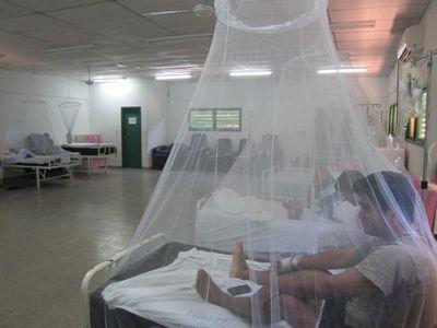 Salud Pública confirma 4 muertes por casos de dengue