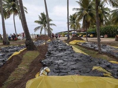 Manchas de petróleo superan 1.000 playas en litoral brasileño