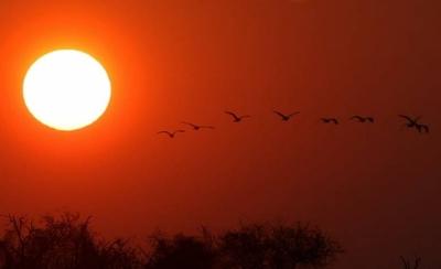 HOY / Lunes muy caluroso y con posibles chaparrones