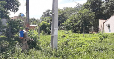 Aumentan los casos de dengue en San Pedro he'i