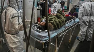 Arenavirus: La enfermedad que volvió a resurgir y ya mató a una persona en Brasil