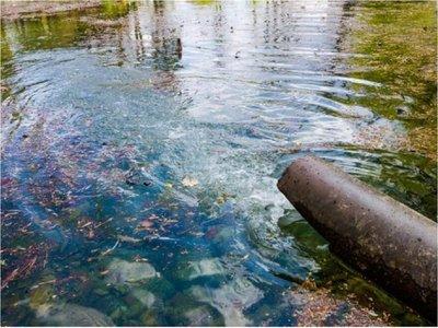 Científicos descontaminan un acuífero utilizando bacterias