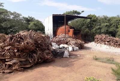 Constatan graves irregularidades en matadero luqueño •