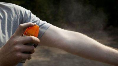 Ante aumento de casos de dengue, recomiendan usar repelente todos los días
