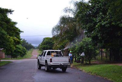 San Juan registra elevado índice de infestación larvaria