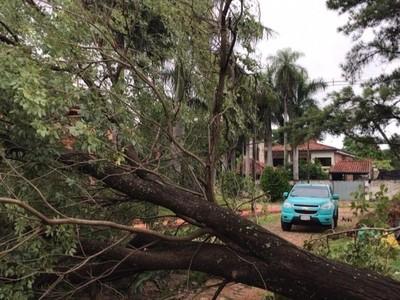 ANDE sigue con los trabajos de reparación para reponer servicio en Asunción