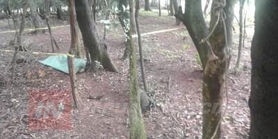 HALLAN CADÁVER EN ZONA RURAL DE CNEL. BOGADO