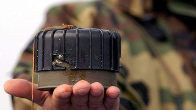 EE.UU. considera autorizar de nuevo uso de minas antipersona