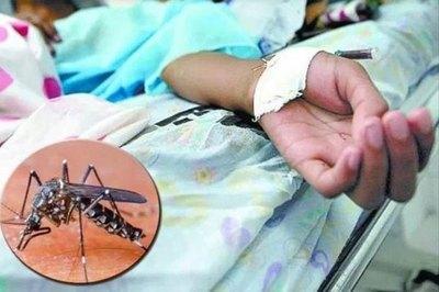 En solo 29 días, IPS ya pagó 415 millones por reposos de dengue