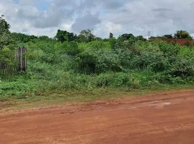 Vecinos reclaman limpieza de baldíos con verdaderas selvas