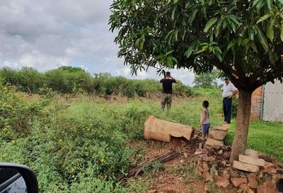 Vecinos denuncian que terrenos en mal estado son criaderos de mosquitos