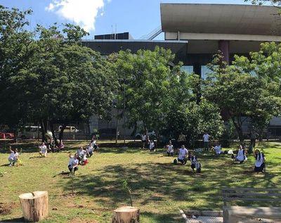 Fans plantan árboles frente al Congreso