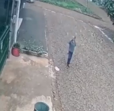Comerciante envenena a perro de su vecino