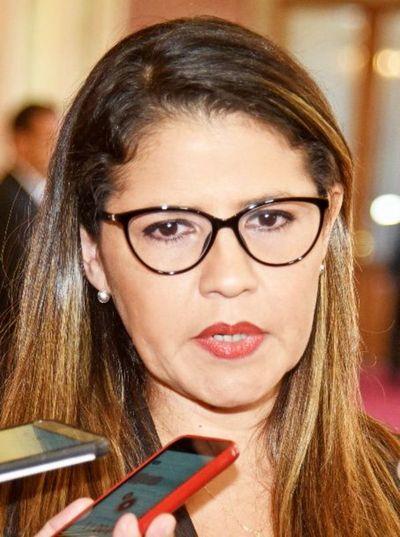 Ministra de Justicia se sumó al Consejo de Seguridad