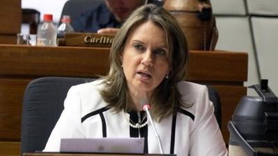 """Financiamiento Político: Diputada afirma que sus colegas """"mataron el proyecto"""""""