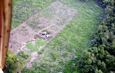 Denuncian depredación de la Reserva San  Rafael