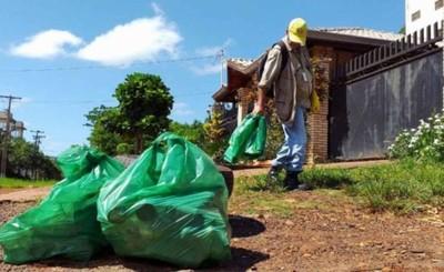Alto Paraná con 10 casos de dengue confirmados