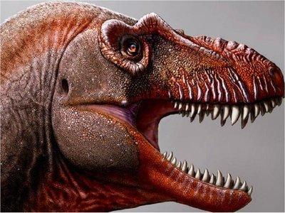 Un primo lejano del T-Rex fue encontrado en Canadá