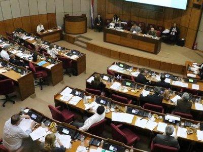 Senadores tienen en sus manos rectificar la ley de financiamiento