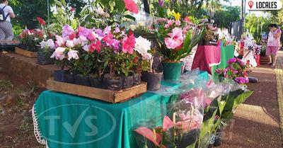 Mujeres ofrecen plantas como opción de regalo para el día de los enamorados