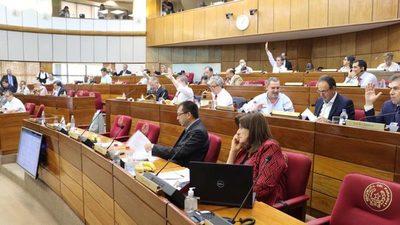 Financiamiento Político: Una nueva versión se aprueba en Senado
