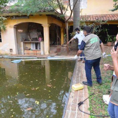 """Dueño de la """"Mansión de los mosquitos"""" no estaba al tanto de la situación, afirma abogada"""