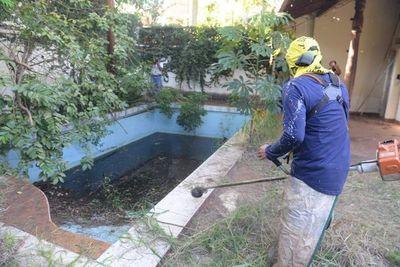 Sancionaron emergencia por dengue. Ahora depende del Ejecutivo