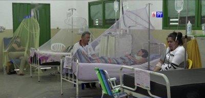 Cámara de Diputados aprueba emergencia sanitaria por dengue