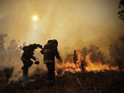 Incendio forestal obliga a autoridades chilenas a cerrar parque nacional