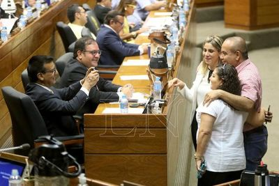 Diputados sancionó proyecto de Financiamiento versión Senado