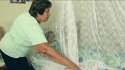 HOY / Coronavirus, sarampión y dengue: Mercosur teme un ataque masivo de plagas