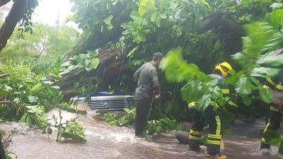 Cuantiosos daños materiales tras fuerte temporal en Encarnación